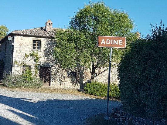Adine in Chianti: 20160808_183245_large.jpg