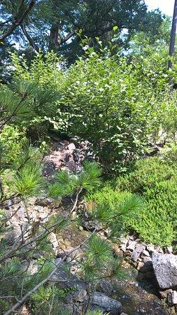 Eberswalde, Niemcy: Kleiner Bach im Steingarten