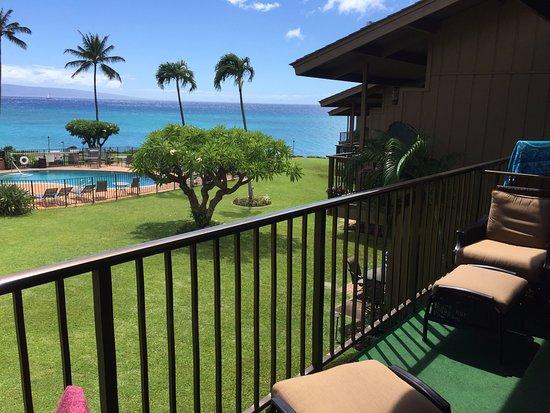 Polynesian Shores Photo