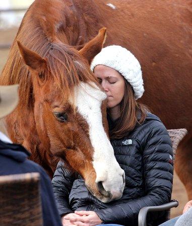 Bonsall, CA: Healing Horse