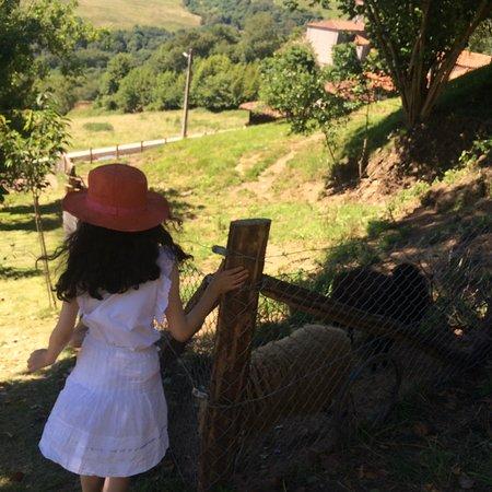 Foto de Cofiño
