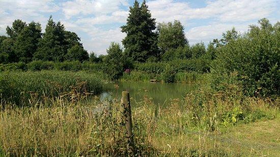 Крюкерн, UK: IMAG0429_large.jpg