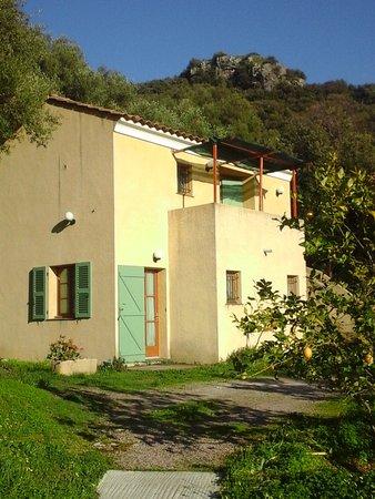 A Casa di l'Alivu