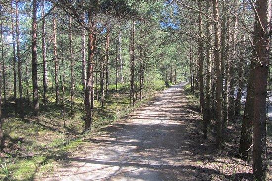 Wladyslawowo - Hel Biking Trail