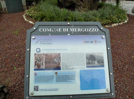 Mergozzo, Itália: Targa del comune