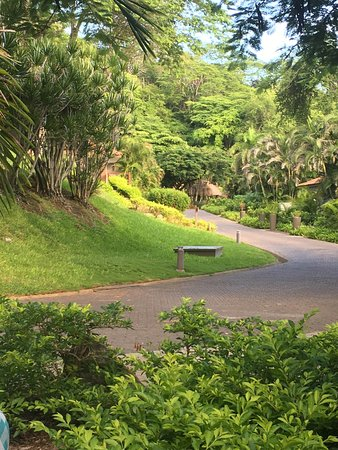 Costa Rica Travel In August Review