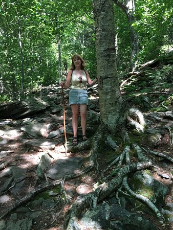 Big Indian, NY: Beautiful and fairly steep Giant Ledge Trail