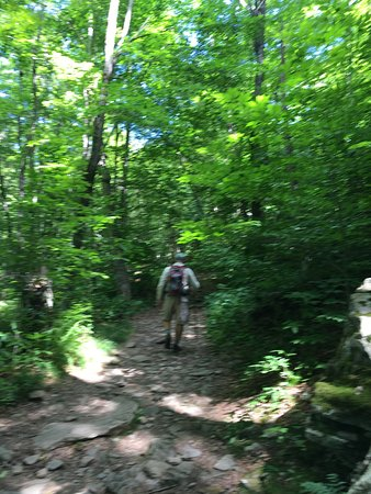 Big Indian, NY: The first section of the Giant Ledge Trail leading to the small ledge.