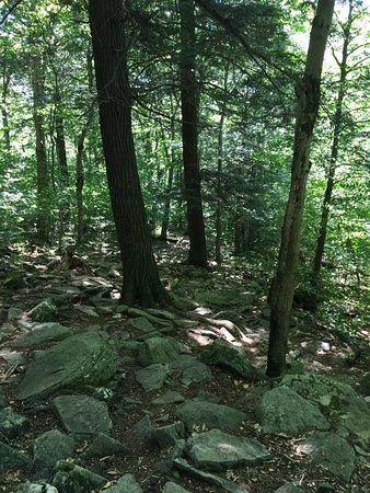 Big Indian, Nova York: Beautiful Giant Ledge and Panther Mountain Trail