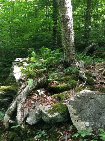 Big Indian, Nova York: Giant Ledge and Panther Mountain Trail