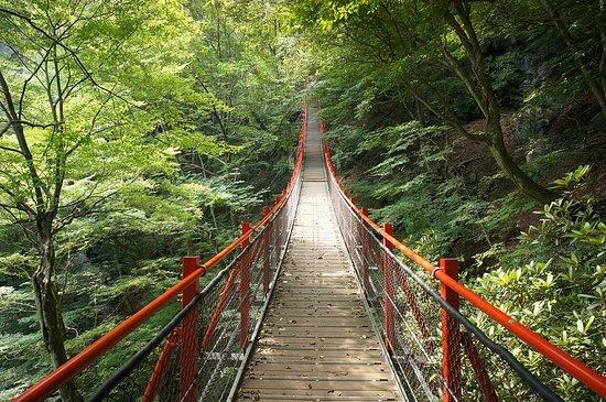Midori, Japan: 大滝側から見たけさかけ橋