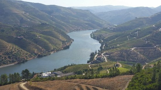 Folgosa, Portugalia: 20160810_100000_large.jpg