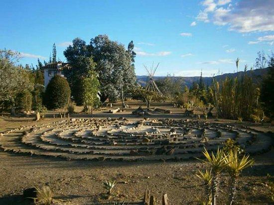 Foto de fibas jardin de desierto villa de leyva fibas for Jardin del desierto