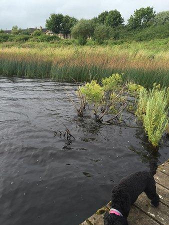 Watermill Lodge: photo5.jpg