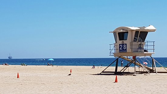 Bolsa Chica State Beach: 20160810_144546_large.jpg