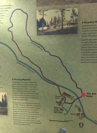 Meadow Loop Trail map Picture of Wawona Meadow Yosemite National