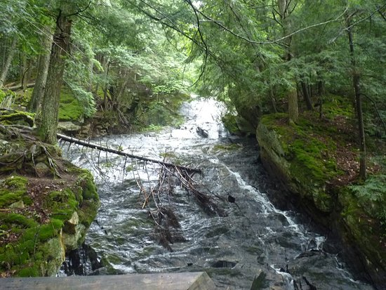 Killington, VT: Thundering Brook