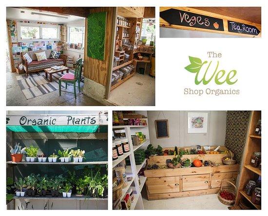 The Wee Shop Organics