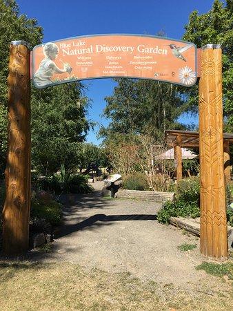 Fairview, Όρεγκον: discovery garden