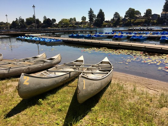 Fairview, OR: canoes and peddle boats