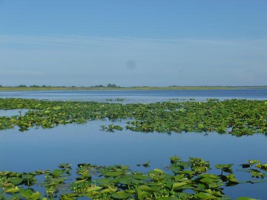 Κίσιμι, Φλόριντα: Lake