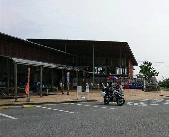 Kunisaki, Japan: 道の駅くにみ、タコのオブジェ