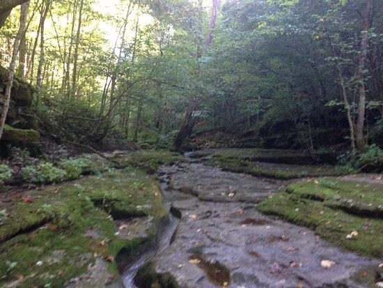 Raven Run Nature Sanctuary: photo6.jpg