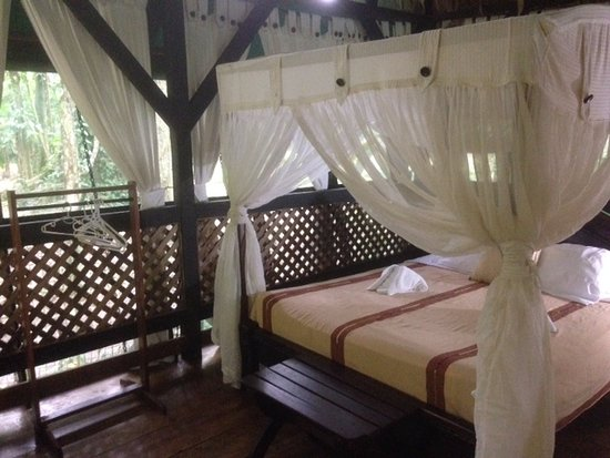 Almonds and Corals Hotel: Mi habitación tenía una cama queen y una adicional de una plaza y media, además de una hamaca .