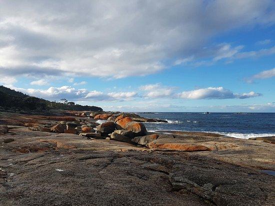 Бичено, Австралия: 20160810_152554_large.jpg