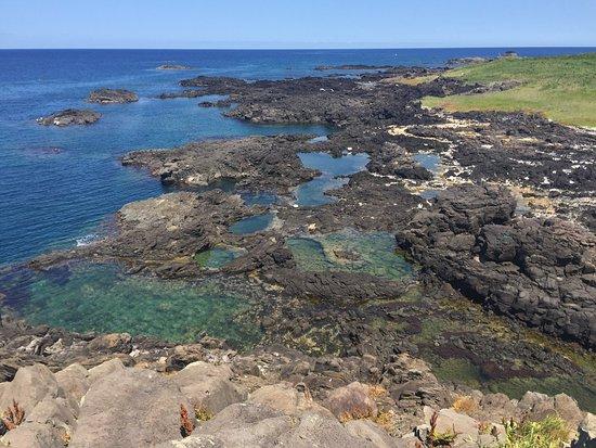 Hegura Island: photo2.jpg