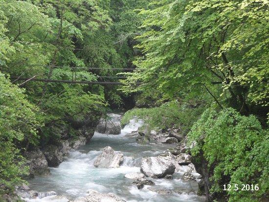 Tolmin Gorge: The river and suspension bridge