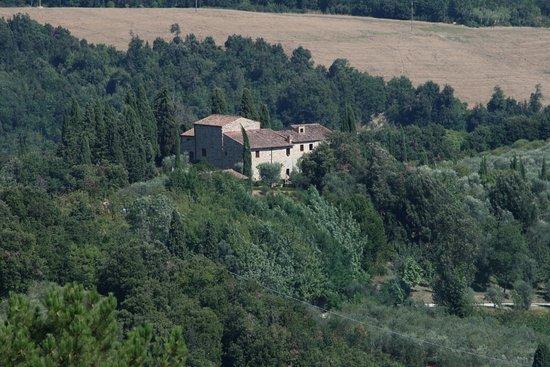 Tenuta Sant'Ilario-billede
