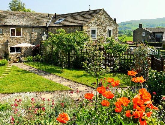 Poppy Cottages: The lovely poppy garden