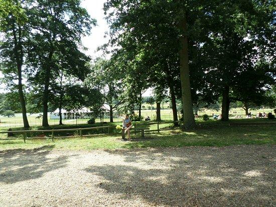 Alcester, UK: SAM_0194_large.jpg
