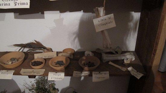 Teggiano, Włochy: Contenitori in terracotta con parti di animali essiccate per la triturazione e l'uso come farmac