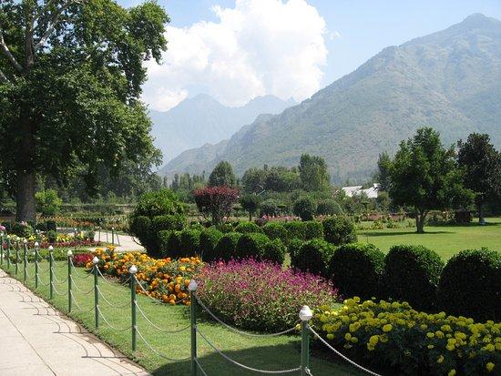 Patjhar picture of mughal gardens srinagar Mughal garden booking