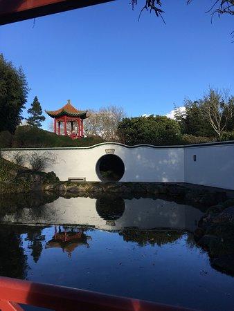 Hamilton, Nueva Zelanda: photo4.jpg