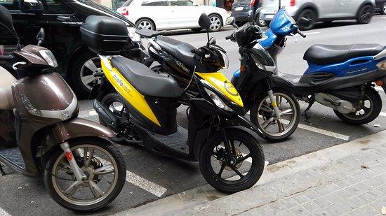 moto scooter gracia