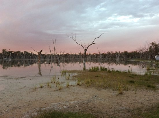 Barcaldine, Australia: Just on dusk looking across the wet lands