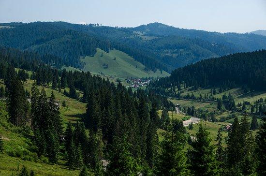 Maramures County, Rumania: Muy cerca de la cima