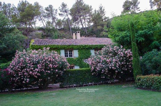 Noves, Francia: Θέα από τον κήπο του ενός σπιτιού