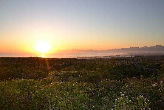 Foto Grootbos Private Nature Reserve