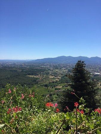 Capannori, Italia: La vista Da Severino!