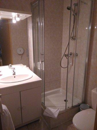 Hotel Le Francais : Salle de bain