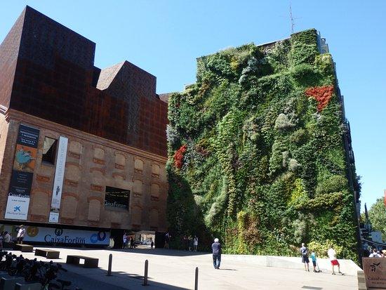 Bild von paseo del prado madrid tripadvisor - Patrick blanc mur vegetal ...