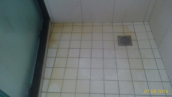"""Terre Rouge: Mud coming out of the shower instead of water (in the """"superior"""" room)."""
