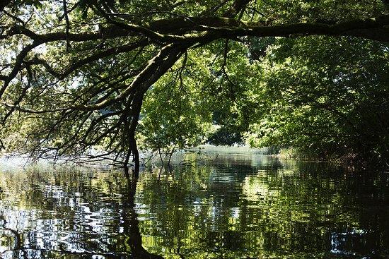 Lormes, France : Lac de Chaumeçon