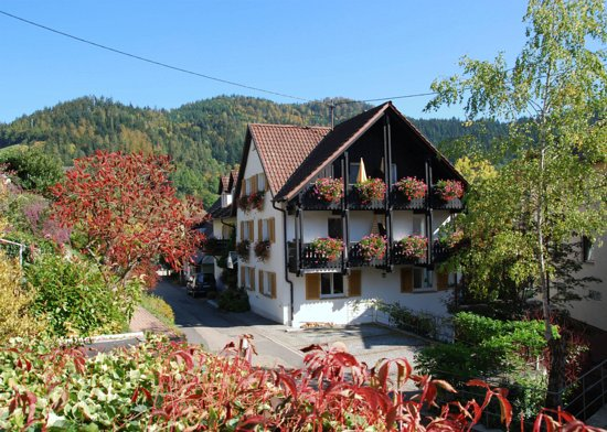 Forbach, Tyskland: Westseite Balkone