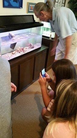 Port Royal, SC: Feeding Horseshoe Crabs