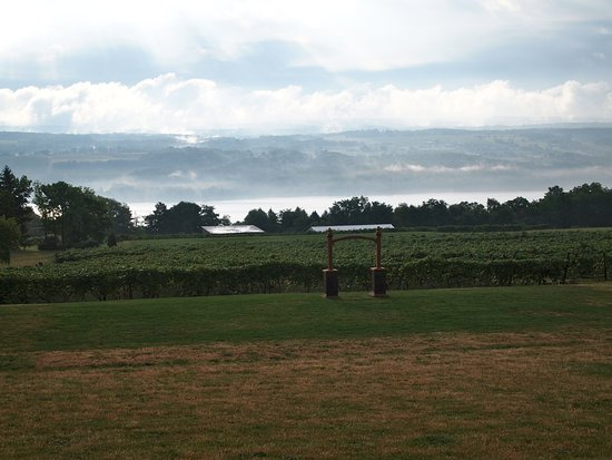 Dundee, Nowy Jork: View of the Vineyards and Lake